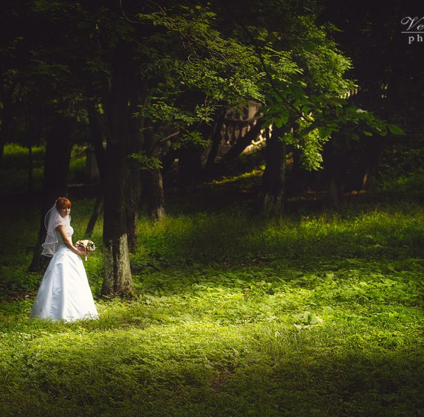 Weddings4