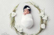 Newborn Photographer Franklin TN Brentwood TN Spring Hill TN